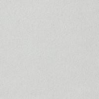 Coton uni - gris clair - UN29